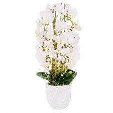 SPRINGOS Umelá orchidea v črepníku biela - 80cm