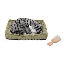 Dýchajúce zvieratko - Sivá mačka